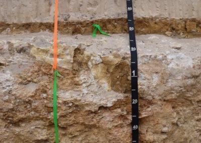 ASJC2019 Pit 1 Peats Soil I Oliver