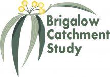 BCS_Logo_Detailed
